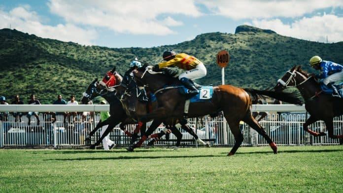Horse racing, photo by Julia Joppien on Unsplash