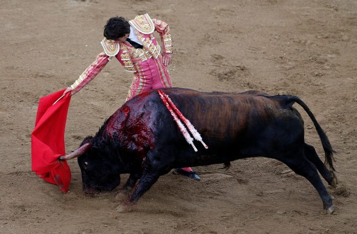 Bullfighting in Colombia, photo: Reuters