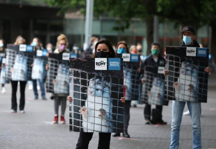Protest calling for an end to the fur trade, photo: Reuters