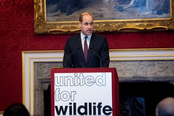 Prince William delivers a speech during a meeting of the United for Wildlife Taskforces in London