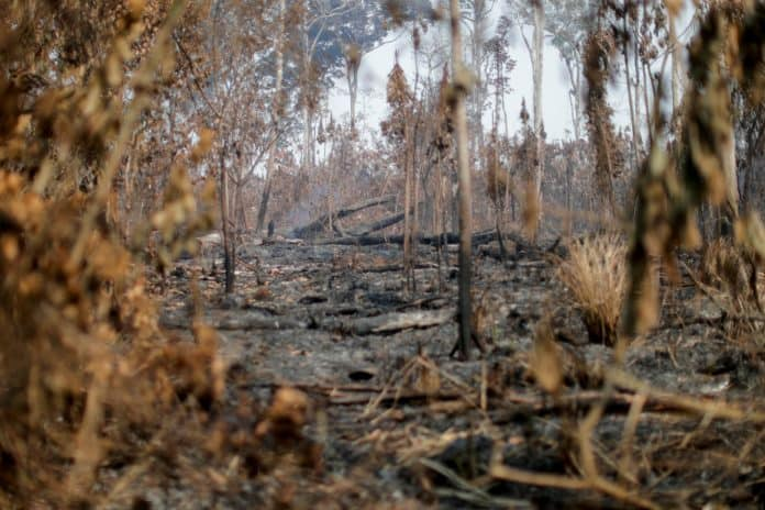 A burning area of the Amazon jungle is seen near Apui, Amazonas State, Brazil, August 11, 2020. Reuters/Ueslei Marcelino