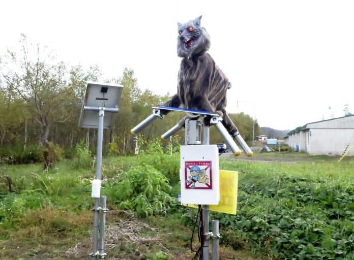 Monster Wolf robot, Takikawa, Japan. photo: Kyodo/ Reuters