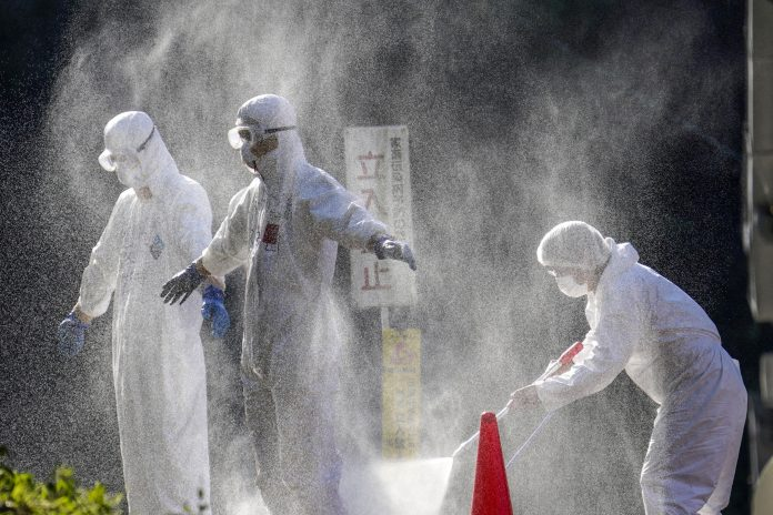 Officials in protective suits work at a chicken farm where bird flu was confirmed, Japan, photo: Kyodo / via Reuters