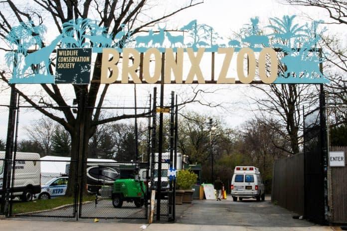Bronx Zoo, New York, photo: Reuters/Eduardo Munoz