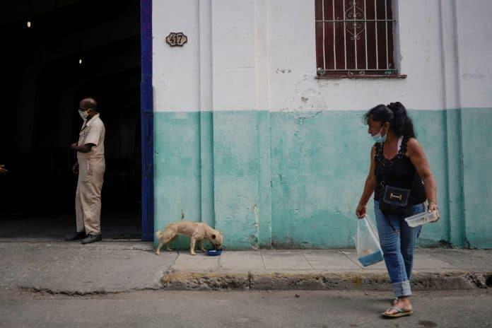 Animal rights activist Gilda Arencibia feeds a stray dog in Havana, photo: Reuters/Alexandre Meneghini