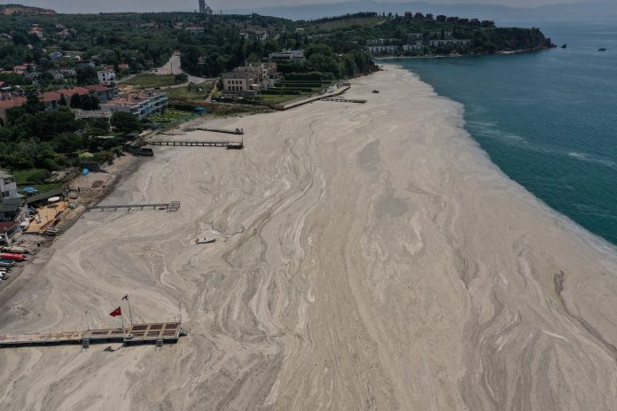 Aerial view of beach covered with sea snot, Sea of Marmara, Turkey, photo taken with drone, credit: Reuters/Umit Bektas