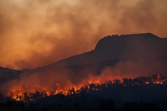 Bushfires below Stacks Bluff, Tasmania, Australia, photo: Matt Palmer on Unsplash