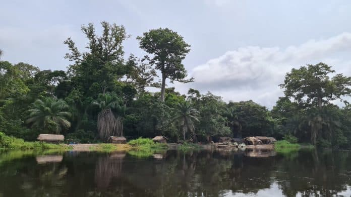 River with trees in the back and huts where people live on the shore